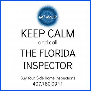 Keep Calm & Call The Inspector!